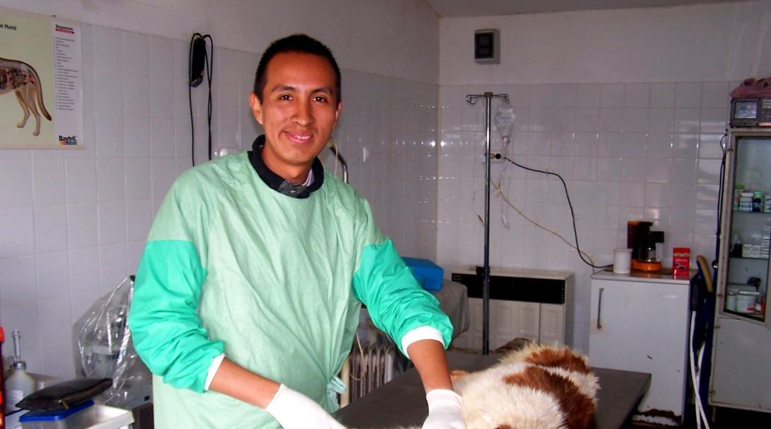 A volunteer working with animals in Romania, observes a vet as he does a simple procedure on a dog.